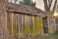 IMG_2896 - Exploring Behind Pozo Saloon, Pozo, CA (Ashala Tylor Images) Tags: oldbuilding pozosaloon