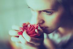 Red rose (basistka) Tags: red woman girl rose poland flover basistka lesnianska