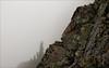 Fog on Plummer Peak (sshermanphoto.com) Tags: summer cliff mist rock fog washington state hiking hike mountrainiernationalpark wilderness sigma30mm14 plummerpeak nikond300