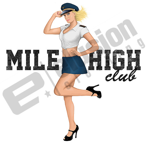 vintage milehigh pin up