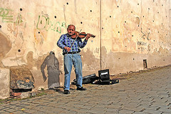 "Violinist • <a style=""font-size:0.8em;"" href=""http://www.flickr.com/photos/45090765@N05/5465401622/"" target=""_blank"">View on Flickr</a>"