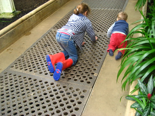 Alex and Ben in the Palm House