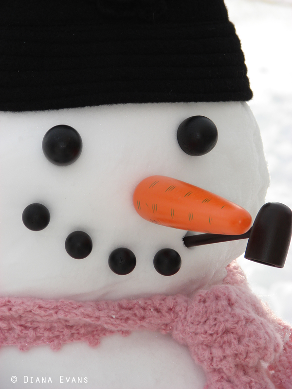 February 25th 2011 - snowman day 048