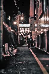 Tokyo Suburb (Elvira Zollerano) Tags: travelling japan tokyo cities nightshots suburb giappone
