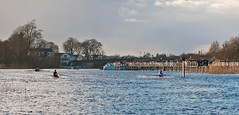 _DSC4144.jpg (Carrickphotos) Tags: ireland sport river boats competition rowing leitrim carrickonshannon