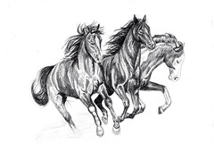 IF: Swarm (Say It Aint SO!) Tags: horses art animal illustration pencil sketch drawing illustrationfriday graphite equine ifswarm