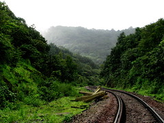 Winding railroad.... (Jayfotographia) Tags: railroad india mountains tourism trekking goa greenery karnataka westernghats indianrailways dudhsagar irfca doodhsagar earthasia braganzaghats jayasankarmadhavadas