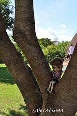 Iani também ama a natureza!!