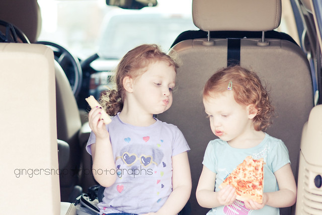 car picnic5