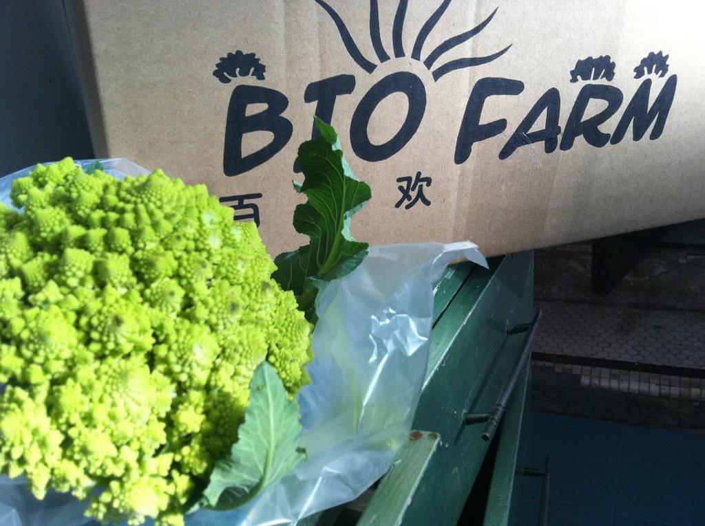 BioFarm Shanghai