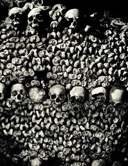 ( patric shaw) Tags: catacombsparis patricshaw