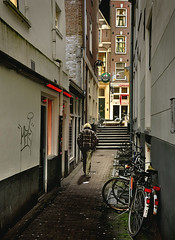 Red Light District. The romantic Tree Alley (martin alberts Pictures of Amsterdam) Tags: amsterdam alley redlightdistrict 1012 hookers wallen prostitutie hoerenbuurt amsterdampictures martinalberts hccity fotosamsterdam boomsteeg postcode1012
