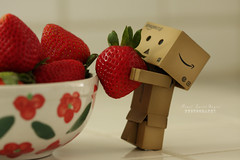 'Holy strawberries Danbo we're in a jam!' (.OhSoBoHo) Tags: california from red colour macro kitchen fruit toy japanese robot yummy strawberry berry sweet small strawberries bowl fresh scrumptious pearl carry helping lucious danbo amazoncojp 2011 5aday sooc canoneos40d californiastrawberries pearllucia danboard  danboru ohsoboho amazoncardboardrobot