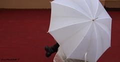 IMG_0784 - Ver 11-21 (p) (Facebook profile: Luca Macchitella Ph) Tags: winter red white rome roma rain umbrella inverno rosso pioggia bianco ombrello 2011