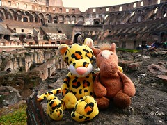 Wild animals in the arena (Luthien Nenharma) Tags: italien italy rome roma italia rom colosseo stofftiere wildanimals coloseum plushtoys koloseum wildetiere cuddlypets