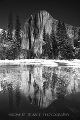 El Capitan Reflected,  February 20, 2011 (Robert Pearce Photography) Tags: california trees winter blackandwhite bw snow monochrome yosemite february elcapitan yosemitevalley 2011 nikond200 robertpearce robertpearcephotography