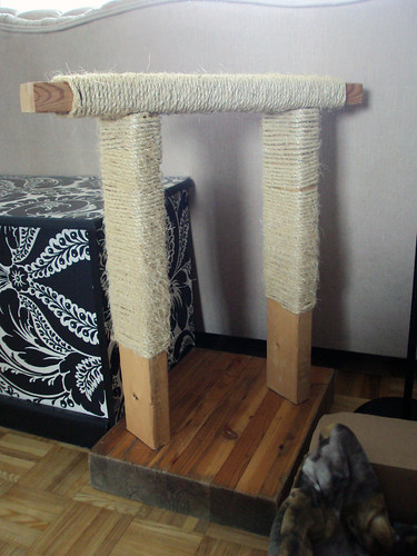 DIY Scratch Post