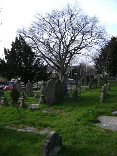 Hope N Wales 2011-03- 00012