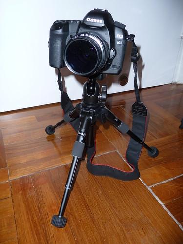 A nice big camera on a quite small tripod