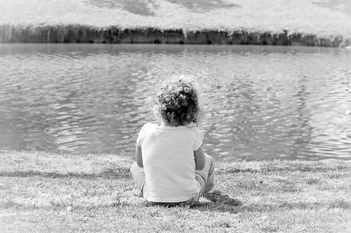 Picnic at the Pond