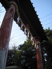 20110313 鷲宮神社鳥居