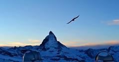 Matterhorn At Sunset (pallab seth) Tags: travel winter sky snow alps bird tourism nature silhouette photography switzerland photo nikon europe image traveling dslr nikon1855mmf3556gafsdxvr d3100 nikond3100