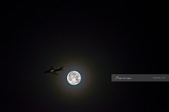 Flight to the Super Moon and back (naina_) Tags: sky moon night plane flight halo super naina 2011 perigee supermoon