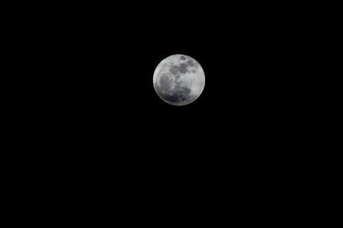 moon-2183.jpg