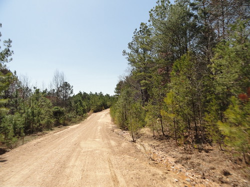 Dirt Road, Winston County AL