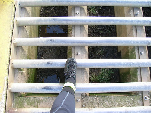 Deathly slippery cattle grids