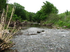 Free Texas Watershed Steward training to be held March 29 in College Station