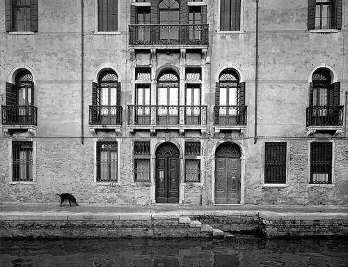 Pentti Sammallahti, Venice, Itay, 2000