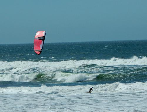 with-kite.jpg