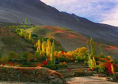 NAGAR , PAKISTAN (TARIQ HAMEED SULEMANI) Tags: autumn pakistan mountains tourism nature colors trekking hiking north peaks hunza tariq nagar kareemabad concordians hushay sulrmani