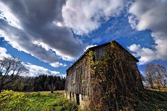 Late Autumn (Ivan Sorensen | www.ivansorensenphotography.com) Tags: autumn trees light sky ontario canada field clouds barn landscape nikon natural bright farm rustic hamilton colourful hfg d90 niksoftware capturenx2 nikcep
