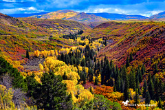 WELCOME TO MY WORLD (Aspenbreeze) Tags: autumn gold goldenaspens aspen aspens valley mountains hills country rural nature firtrees trees seasonal season fallseason fall sky landscape colorado colbrancolorado coloradolandscape bevzuerlein aspenbreeze moonandbackphotography