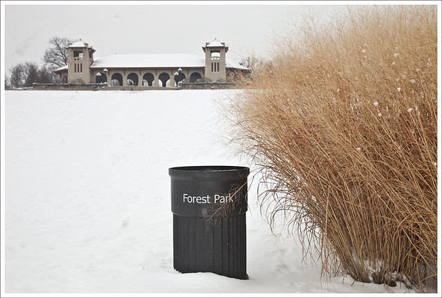 Forest Park 2011-01-25 1