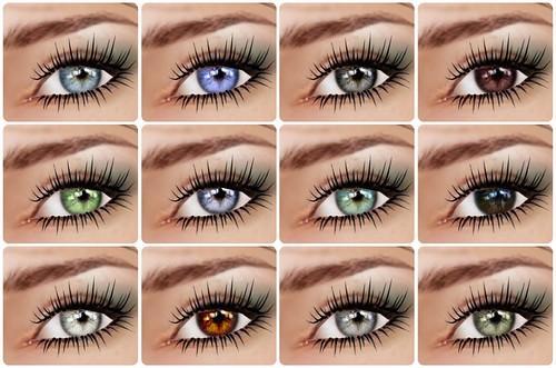 LeLutka - Ellis Eyes