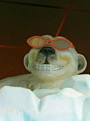 Scottsdaleで出会った粋なシロクマ君