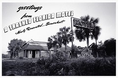 Greetings from... (anmyk) Tags: vacation blackandwhite bw slr abandoned film nature overgrown sign 35mm lens rust closed asahi pentax florida decay postcard 28mm neglected ruin rusty environmental motel retro pollution rusted handpainted fl 135 activism smc environmentalism perry remains abandonment environmentalist dilapidated panhandle reclamation trashed gulfcoast metalsign lostcoast route19 fauxvintage handpaintedsign p30t highway19 us19 m28 pentaxm p30 taylorcounty hwy19 partiallydemolished greetingsfromflorida m28mm naturecoast environmentalactivist partiallydestroyed anomyk