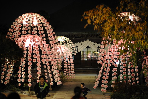 妙好寺の御会式