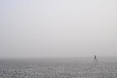Fogwalking at Kincaid Beach. Anchorage, Alaska (Paxson Woelber) Tags: park fog alaska walking alone mud flats anchorage forever mudflats kincaid quicksand kincaidpark thickfog coastalfog tidalflats poorjudgement quickmud glacialsilt coastfog tidalplain alaskalandscape kincaidbeach siltflats alaskacoast alaskaphotography marinefog grayfog foreveralone alaskascene paxsonwoelber mattbergt