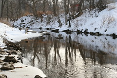 IMG_9117 (TheFarmer) Tags: creek cedar midfebruary