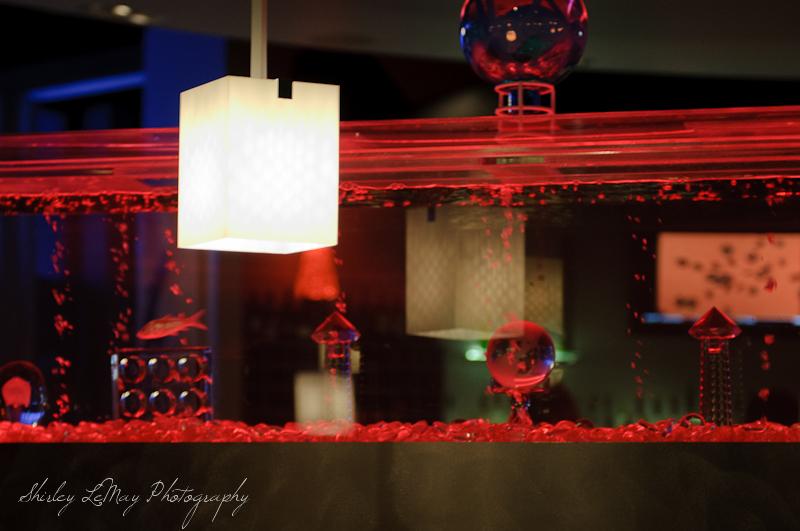 Neon Fish Tank