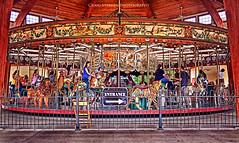 Carousel (Craig - S) Tags: bears roundabout carousel toad tigers lions zebra rooster giraffe merrygoround 1913 flyinghorses ohmy menagerie galloper carosello herschellspillman 1913herschellspillman