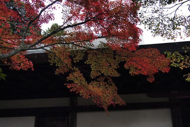 101115_152027_円成寺