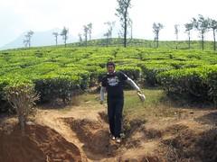 100_0220 (travellersai) Tags: kerala treehouse wayanad teaestate wildboar bandipur chital vythri banasuradam soojiparafalls streamvalleyresorts