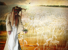 Demeters abundance (AlicePopkorn) Tags: tree bird nature beautiful beauty cornfield demeter seasons earth wheat goddess harvest fantasy creativecommons bubble lovely agriculture fertility abundance crystalball alicepopkorn