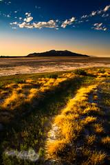 "fantasy (Scott Stringham ""Rustling Leaf Design"") Tags: lake water canon landscape utah sand desert salt greatsaltlake miles rebelxt gsl greatbasin inlandsea pacificflyway itsbigenoughforall ourgreatsaltlake"