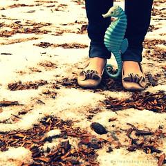 58 | 365 (elle.hanley) Tags: blue portrait snow feet self seahorse legs plastic denim 365 selfie project365 beautybark vivadeva ruffledflats